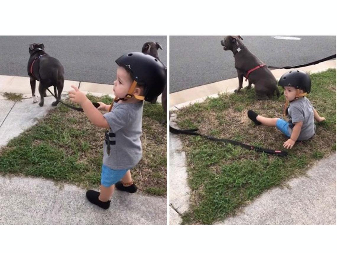 niño pequeño junto a su perro