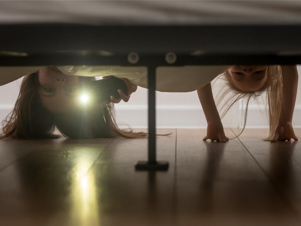 Hay un monstruo debajo de la cama