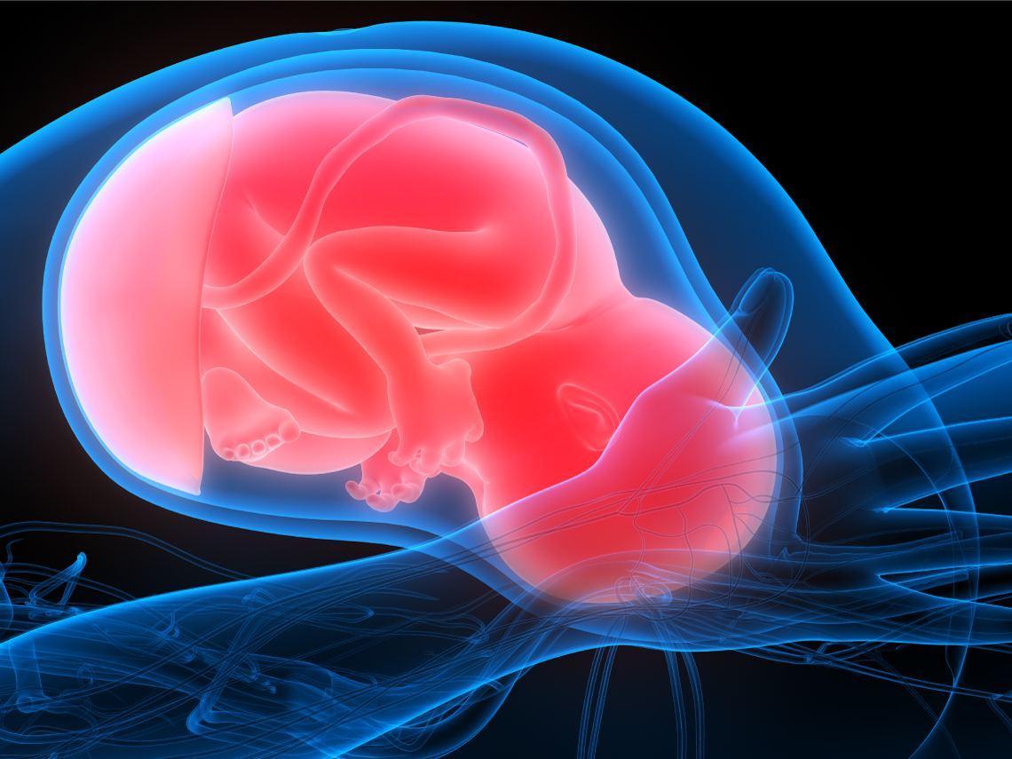 Borramiento del cuello del útero
