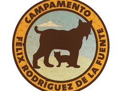 Campamentos de verano con la Fundación Félix Rodríguez de la Fuente
