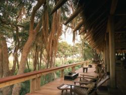 Hoteles ecológicos, una alternativa para las vacaciones familiares