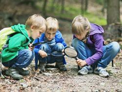 6 ideas para disfrutar de la naturaleza con tus hijos