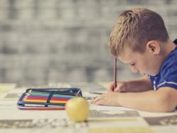 La Ceapa insta a las familias a negarse a hacer los deberes