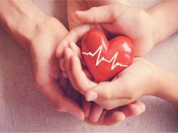 Todo lo que debes saber sobre el ritmo cardíaco en niños