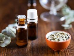 ¿Es seguro utilizar el aceite de eucalipto en los bebés?