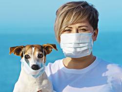 Coronavirus y mascotas: ¿qué debemos saber?