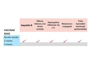 Vacunas primeros meses