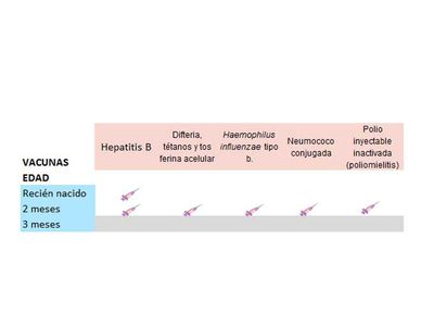Vacunas en la Comunidad Valenciana