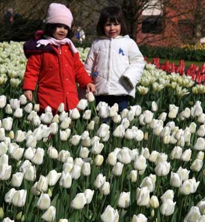 Keukenhof, mucho más que tulipanes