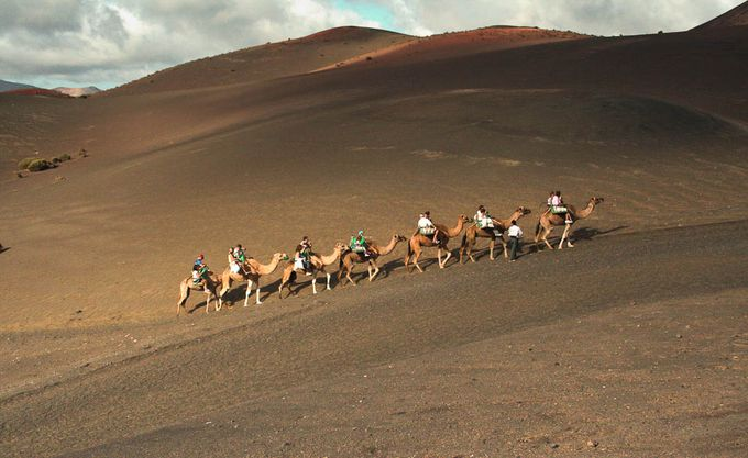 Paseo en Camello, Lanzarote