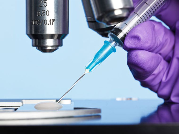 Fecundación in vitro (FIV): preguntas y respuestas