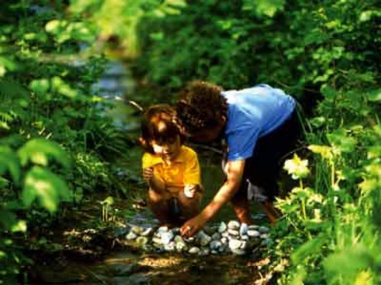 Juegos sensoriales para identificarse con la naturaleza