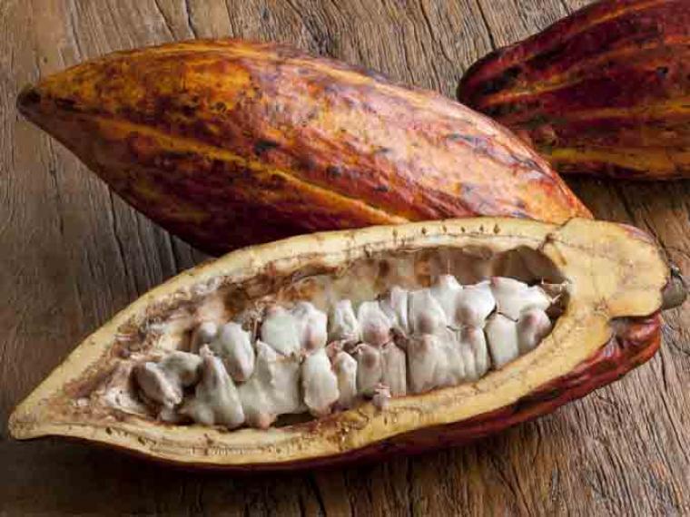 Beneficios del cacao natural en nuestra salud