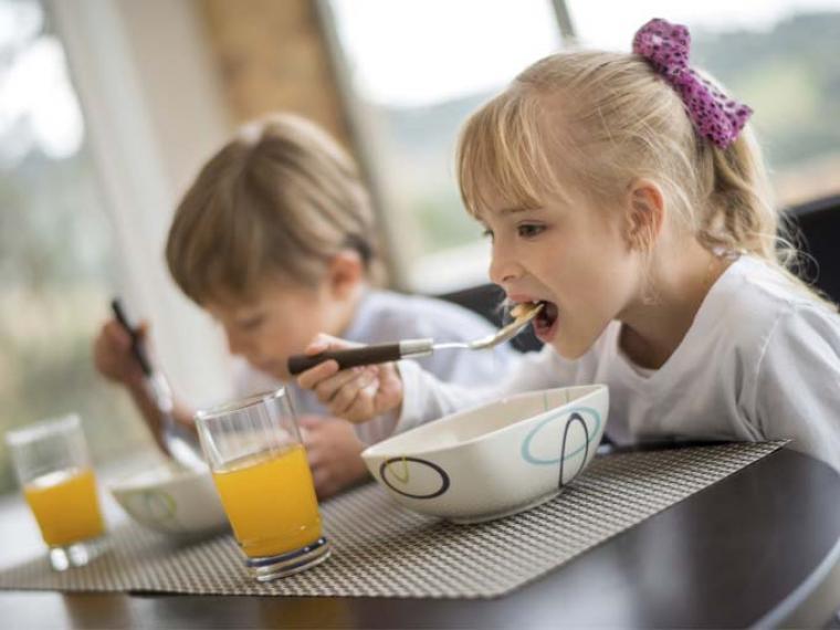 Alimentación ideal para la familia