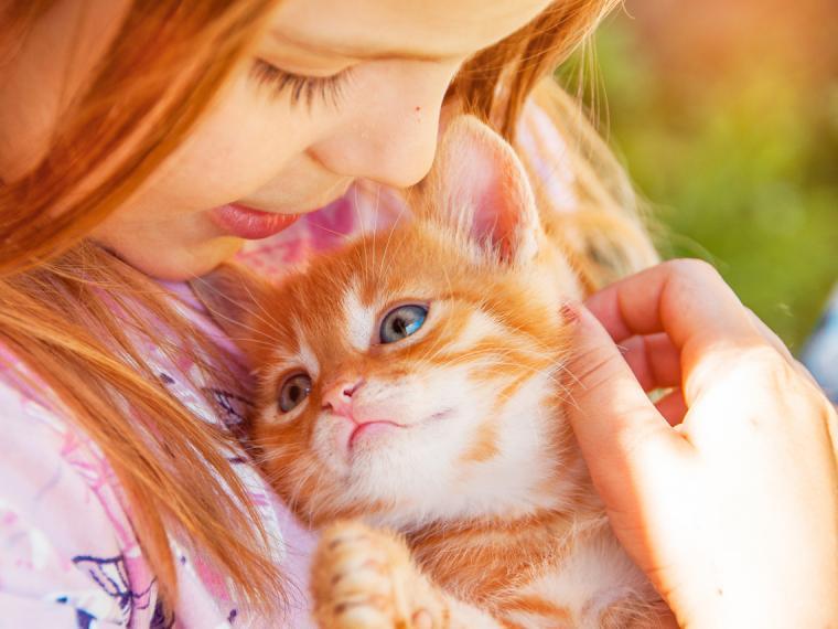 Autismo: la importancia de las terapias con animales