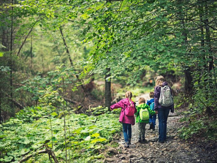 Campamentos para aprender inglés en plena naturaleza