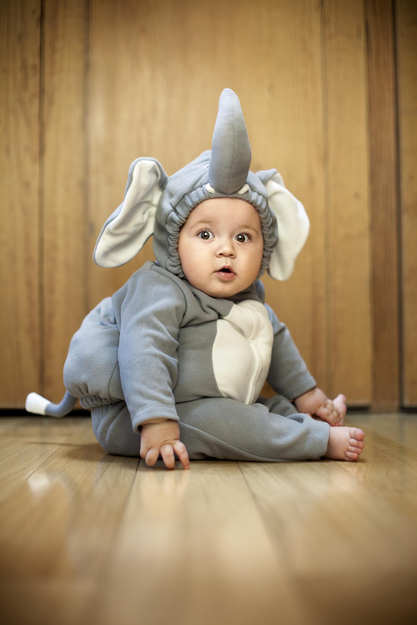El disfraz ideal para un bebé