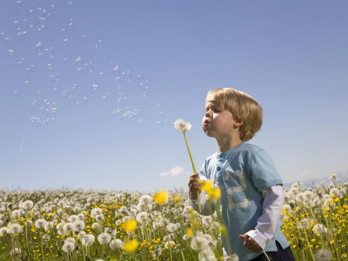 Inteligencia Naturalista: tan vital como todas las demás