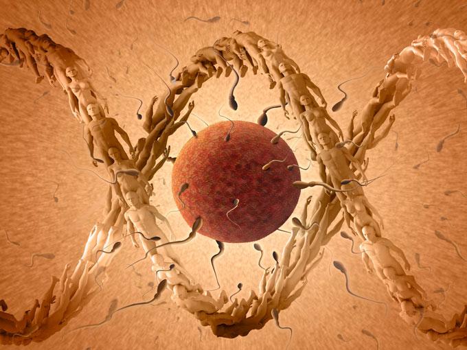 ¿Cómo se evalúa la fertilidad del hombre?