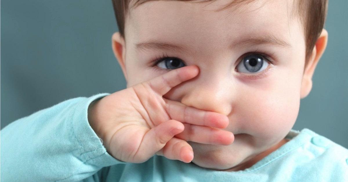 Bebé ¿Qué debemos saber? cover image