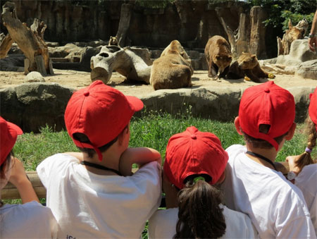 Vive el Planeta Zoo