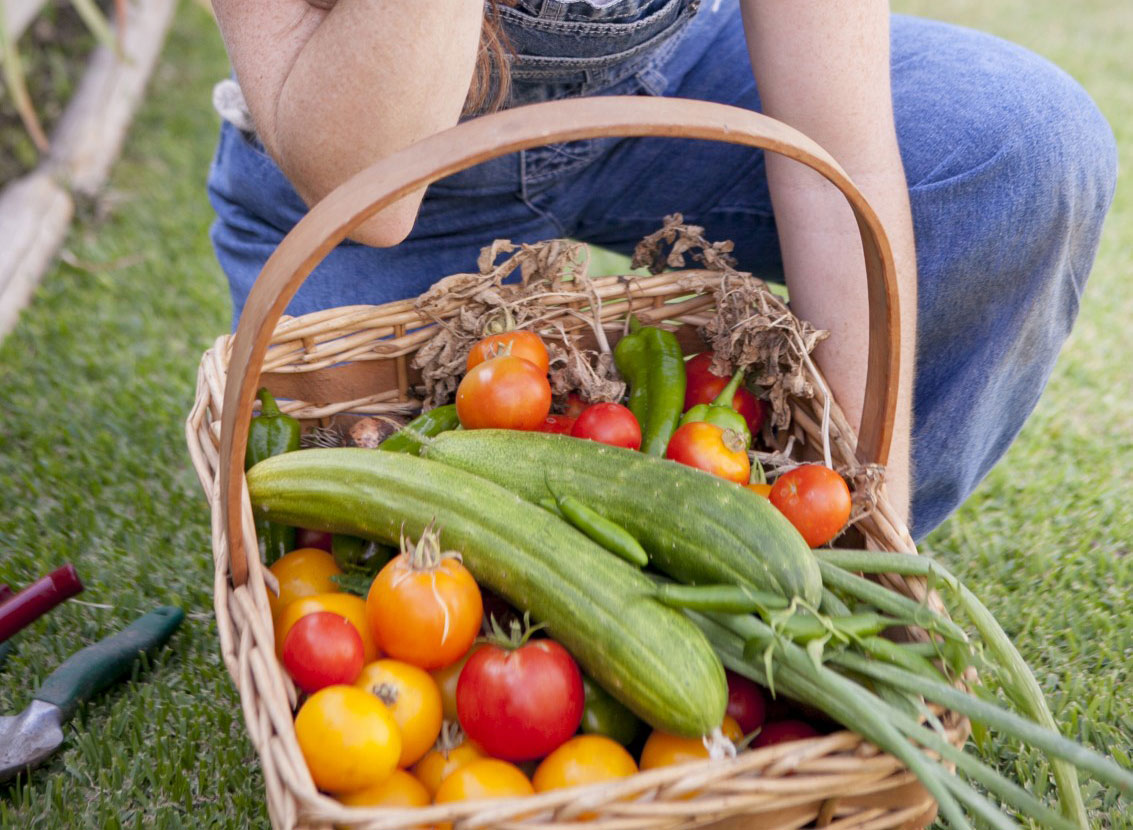 Come verduras