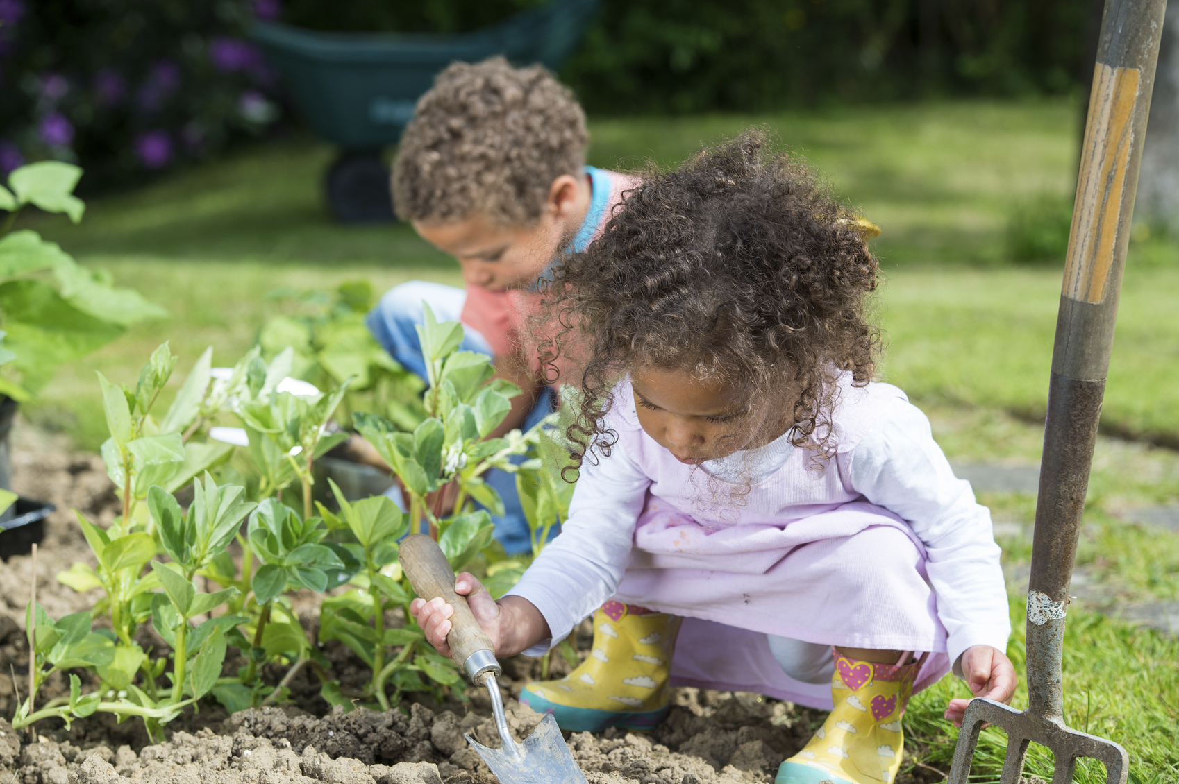 Cuidar las plantas y los animales