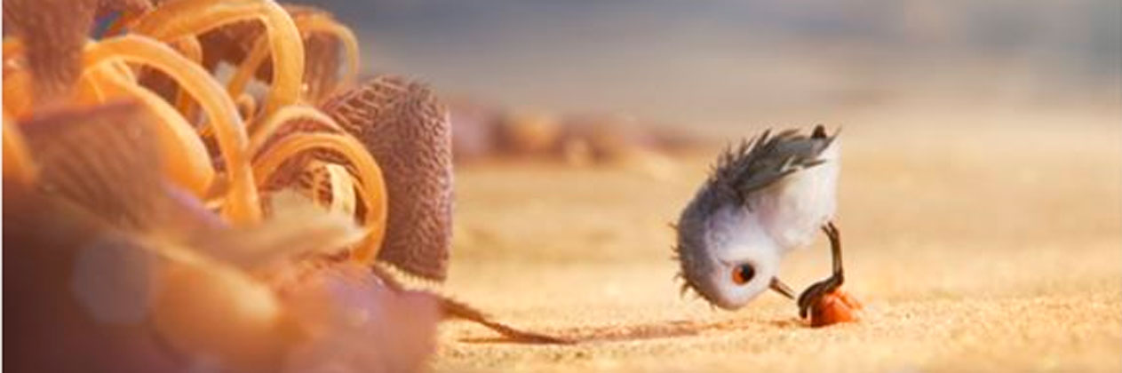 Piper, el nuevo corto de Disney·Pixar